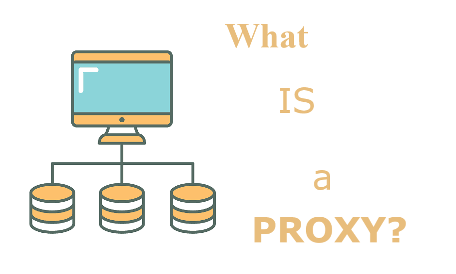 what is a proxy?